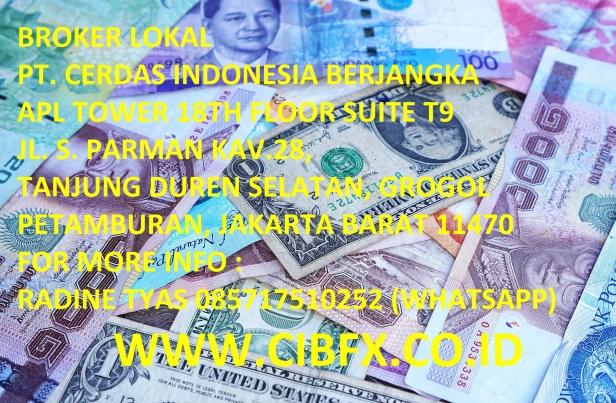 money-1578510_1920
